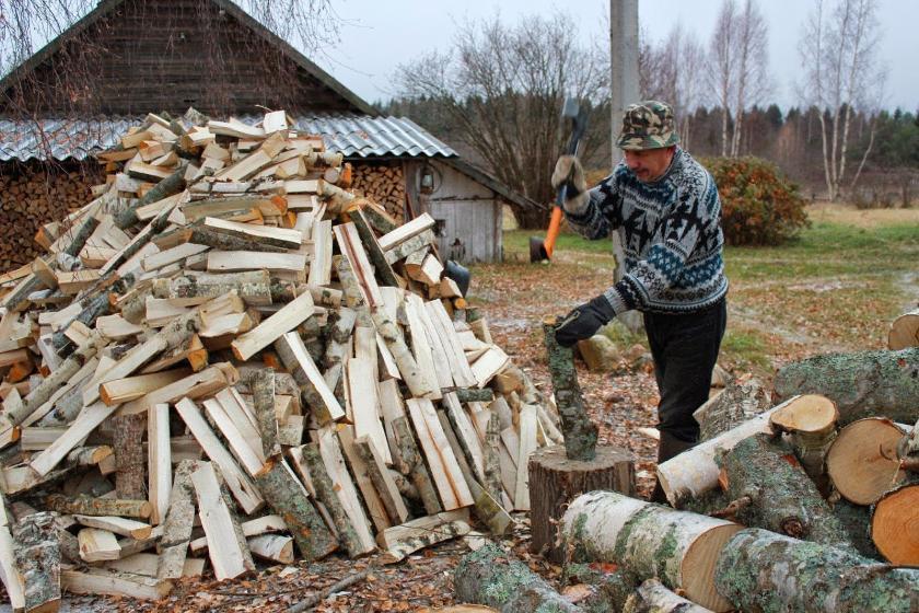 Более 3,5 тысяч калужан бесплатно заготовили древесину для собственных нужд